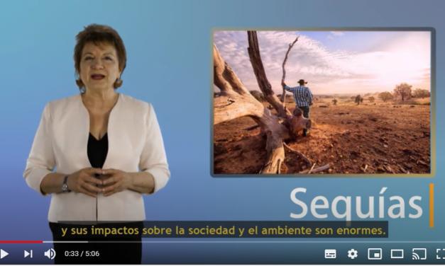 Video de presentación del SISSA