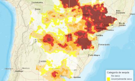 Sequía, bajante e impactos en la Cuenca del Plata